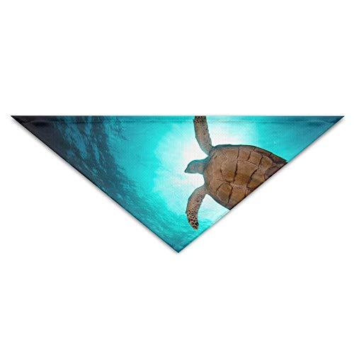 - Sea Turtle Kostüme