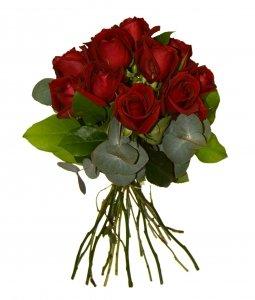 ramo-de-12-rosas-naturales-frescas-de-color-rojo-y-verdes-variados-50-cm-de-altura-maxima-frescura-e