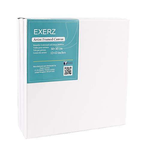 EXERZ Lienzos preestirados 30x30cm Juego de 5 / Lienzos Enmarcados/ 280GSM/Pre-Estirado 100% Algodón/Color Blanco/Triple Preparado/Libre de Acido/Hebra Media / 1,7cm de Espesor