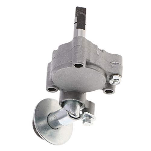 B Blesiya Motorölpumpe Einhell Benzin- und Ölabsaugpumpe Ölstandsanzeiger für 2013 Rancher 500 (CF500-5)
