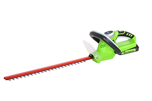 Greenworks Tools 2200007–Batterie modello Basic Tagliasiepi