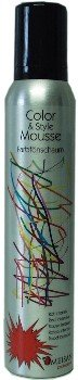 Omeisan Color & Style Mousse Anthrazit, Farbschaum 200ml