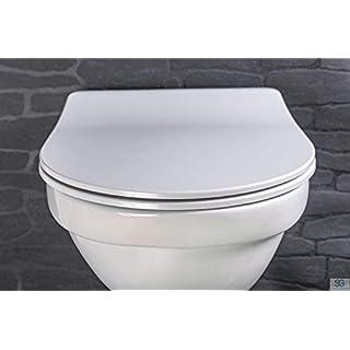 Aquashine Premium WC Sitz Slim-Line mit Absenkautomatik | D-Form Toilettensitz | Abnehmbar mit Click System zur Schnellreinigung | belastbar bis 200 kg
