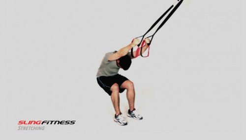 Zoom IMG-2 variosling dvd fitness con bande