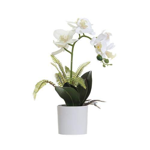 Dough.Q Künstliche Blumen,Kunstpflanze Simulation der Bonsai Phalaenopsis Orchidee mit Topf für Heim-Dekoration und Ornamente 44 cm hoch