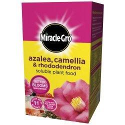 miracle-gro-azalea-camellia-rhododendron-loslich-pflanzennahrung-1-kg