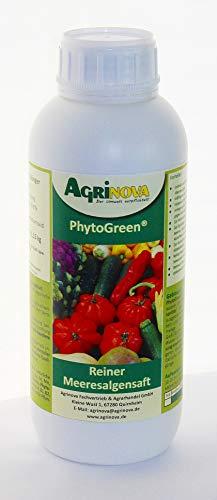PhytoGreen®-Algensaft - 1 Liter - Natürlicher Algensaft als K-Dünger zur Kräftigung und Vitalisierung Ihrer Pflanzen -