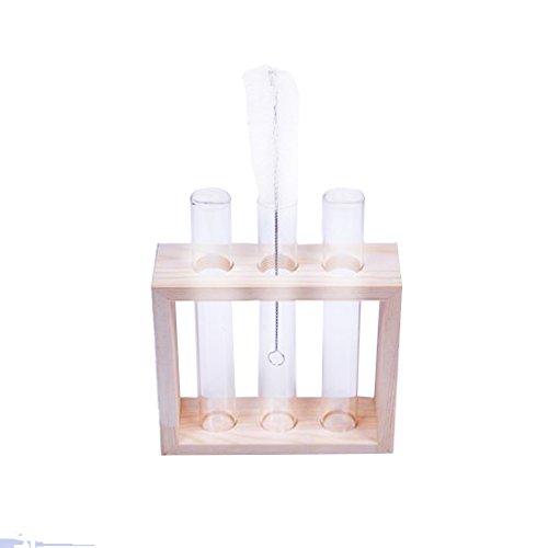 Jarrones Florero Vaso de Cristal Tubo de Ensayo Soporte Madera Decorac