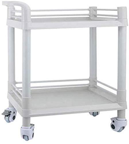 MJK Trolley, Beauty Salon Trolley, 2-Ebenen-Werkzeugwagen, ABS-Kunststoff mit Griffen, für Beauty Salon, Spa, Medizinischer Mehrzweck-Roll-Aufbewahrungswagen (Größe: S),Klein