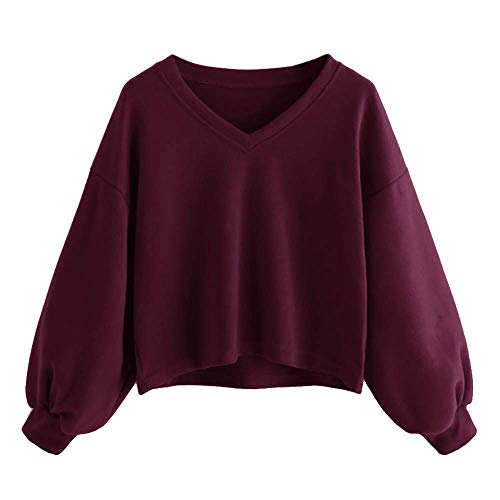 Herbst Winter Daily Style Langarm Gestreiften Womens Elegante Crop Hoodie Sweatshirt Jumper Volleyball Radfahren Schlank Mit Kapuze Pullover Top (Color : WineRed, Size : L)