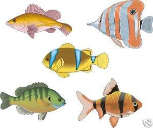 Smarts-Art Lot de 5 autocollants pour poissons tropicaux-F2 les carreaux de la salle de bain