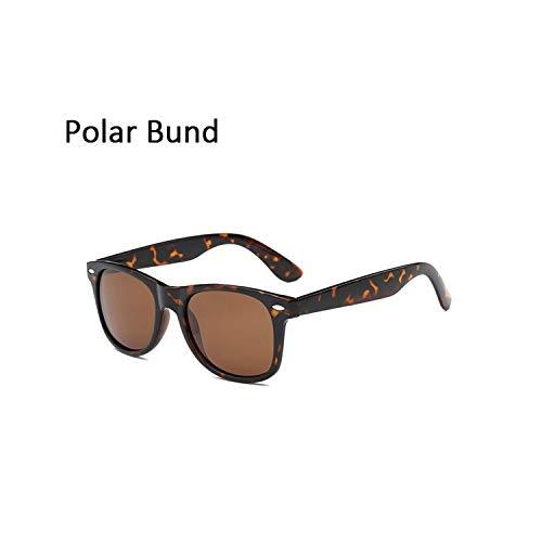 FGRYGF-eyewear2 Sport-Sonnenbrillen, Vintage Sonnenbrillen, Classic Retro Sunglasses Männer WoMänner Polarized Sunglasses KUNSTSTOFF Polarized Driving Mirrors Coating Sun Glasses UV400 Brown