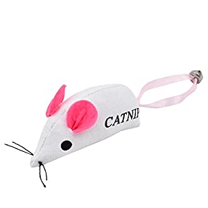 PAWZ Road Animaux chat heureux Set cadeau de Noel 6 jouets 1 paquet Sock Forme Chat tete Presents