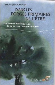 Dans les forges primaires de l'être : Un chemin d'individuation Là où se tisse l'énergie de survie de Marie-Agnès Chauvin ,Hal Stone (Préface),Sidra Stone (Préface) ( 14 octobre 2011 )