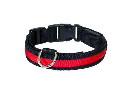 """PRECORN Collar para perros luminoso""""Zandoo"""" Collar LED en el color rojo. Tamaño M (40-50 cm)"""