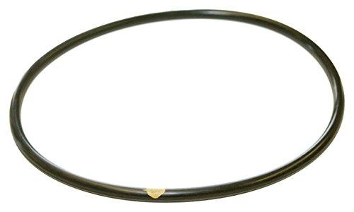 hayward-clx200k-pool-chlorinator-deckel-o-ring-fur-cl200-cl220