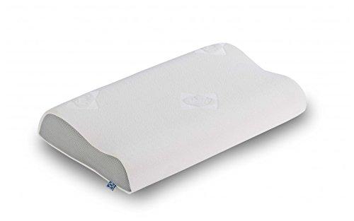 sealy-memo-ergonomic-sealy-tamano-cm-69-x-40-10
