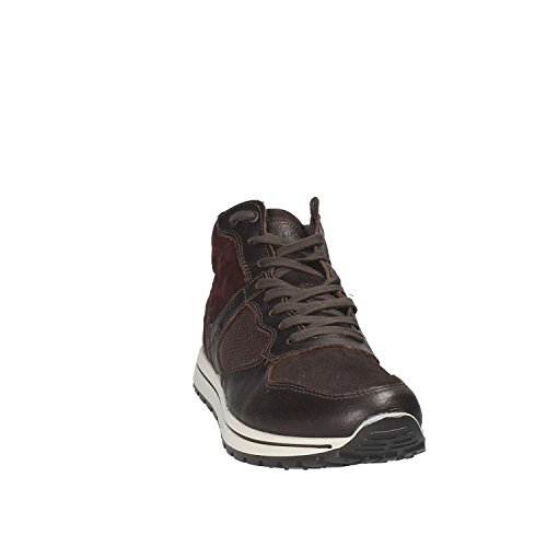 Igi & Co 8744 Sneakers Homme Marron
