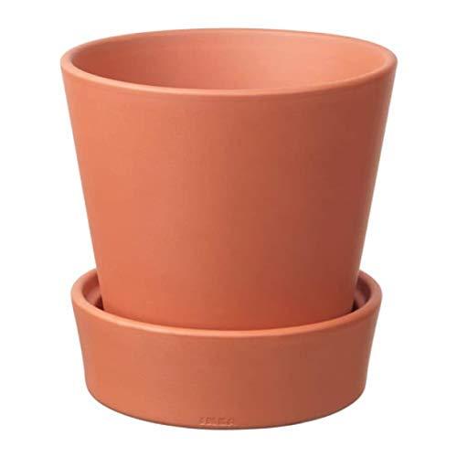 Ikea 302.580.41 Ingefara Blumentopf mit Untertasse, für drinnen und draußen, Terrakotta
