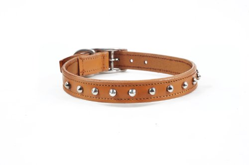 real-leather-small-dog-studded-design-collar-12-14-neck-size-tan