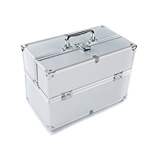 Ardisle Silver Professional Beauty Box Make Up Rose Vanity Case Cosmetic - Jewelry Case (B BOX-SILVER)