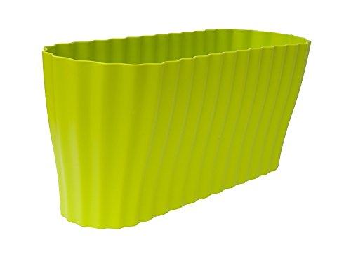 plasti-guscio-di-orchidee-triola-38x13-cm-verde-chiaro