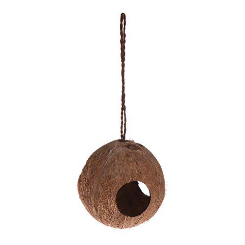Lazder Vogelnestspender Futterstation Verstecken Höhle Kokosnuss Muschel Papageien hängendes Haus