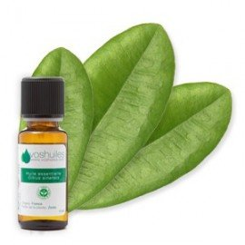 huile-essentielle-de-bay-st-thomas-10ml