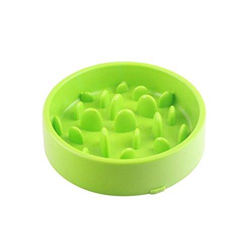 LFF.FF Pet Schüssel Slow Food Puzzle Zubringer Hochwasserschutz Slow-Food-Schüssel Rutschfest Verdicken Gute Qualität Hundenapf,Green