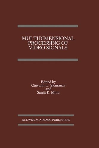 Multidimensional Processing of Video Signals (The Springer International Series in Engineering and Computer Science) Internationale Video-elektronik