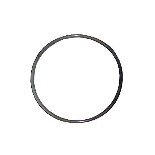 Astral–O-Ring für Deckel Pool Filter 255x 4 - Astral Filter