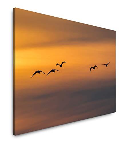 Paul Sinus Art Vögel im Himmel 120x 80cm Inspirierende Fotokunst in Museums-Qualität für Ihr Zuhause als Wandbild auf Leinwand in -