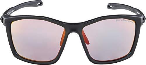 Alpina Twist Five QVM+ Sportbrille, black matt, one size