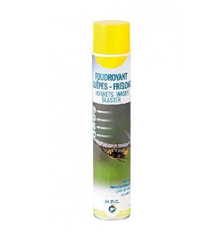 aerosol-foudroyant-guepes-et-frelons-750-ml-ape