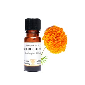 marigold-tagetes-pure-essential-oil-in-a-10ml-amber-glass-dropper-bottle-fungicidal-bactericidal-ant