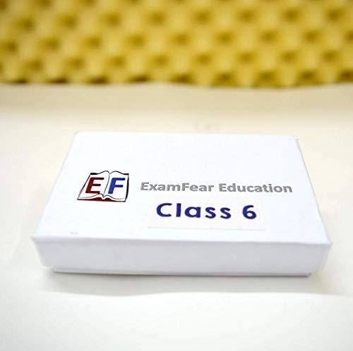 ExamFear Education CBSE Class 6 Preparation (Pendrive + OTG connector)