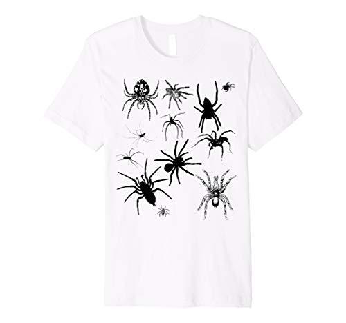 Arachnids Dream Crawly Spider T-Shirt