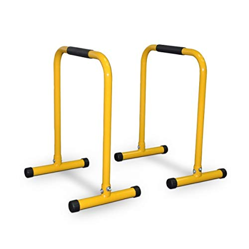 Stern Parallettes Equalizer Body Dip Bars