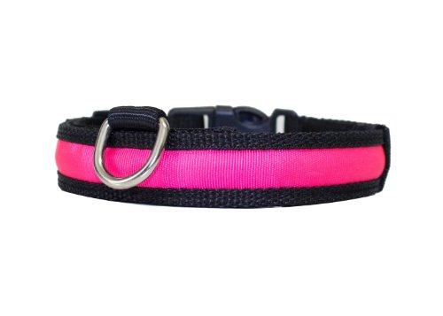 """Hunde Leuchthalsband LED Halsband Hundehalsband Hunde-Halsband """"Zandoo"""" Leuchthalsband für Hunde inkl. Batterie in der Farbe pink Haustiere Katzen Größe S (ca. 35-40 cm) NEU von der Marke PRECORN - 3"""
