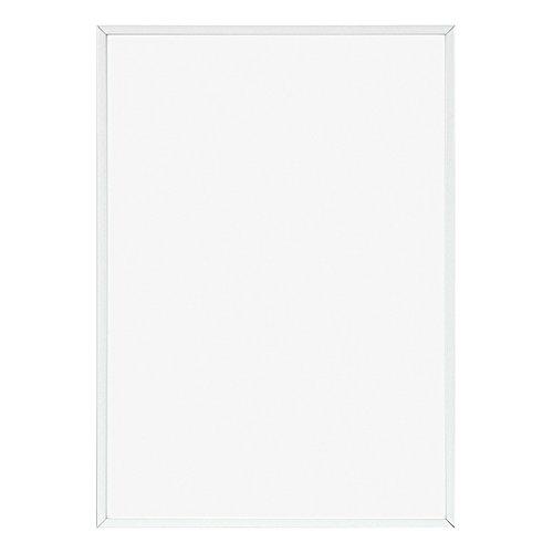 APJ adapter le cadre format poster (400X500mm) Blanc (japon importation)