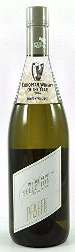 6 x Grüner Veltliner Weinviertel DAC Selection 2017 im Sparpack Weingut R&A Pfaffl, trockener Weißwein aus Niederöstereich vom der EUROPEAN WINERY OF THE YEAR 2016