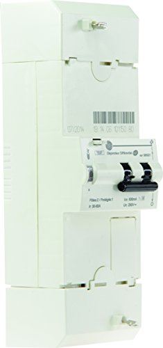 general-electric-aun585021-disjoncteur-de-branchement-edf-2-poles-30-45-60-a-500-ma-protection-selec