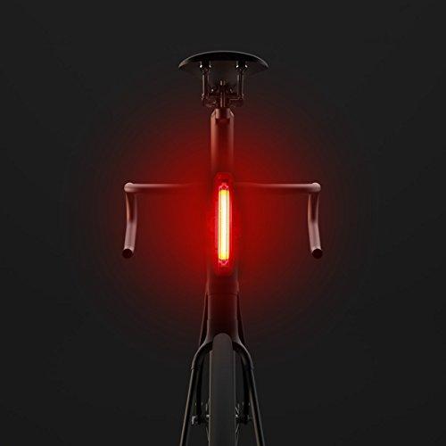 Wallfire USM Rechargeable Head Light 100 Lumen Sicherheitswärmelicht (Color : Red)