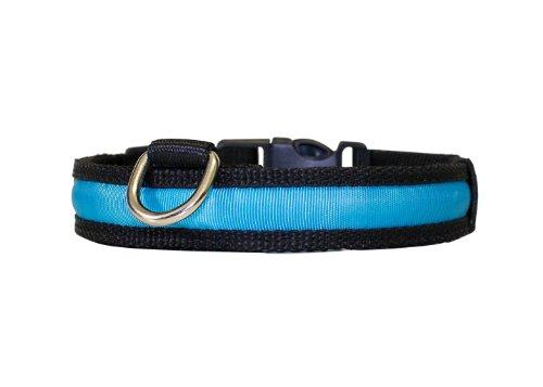 """Hunde Leuchthalsband LED Halsband Hundehalsband Hunde-Halsband """"Zandoo"""" Leuchthalsband für Hunde in der Farbe blau Größe S (35-40 cm) NEU von der Marke PRECORN - 3"""
