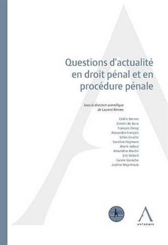 Questions d'actualité en droit pénal et en procédure pénale : Actes de colloque du 12 mai 2017 par Collectif