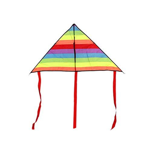 ZYJ Stores-Kites Colorido Rainbow Kite Cola Larga Poliéster Cometas al Aire Libre Juguetes voladores para niños Niños Stunt Surf Kite Muy fácil de Volar (Color : Colorful, tamaño : 39.37inchs)
