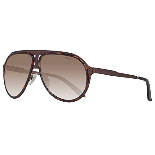 Carrera Herren  100/S   Aviator Sonnenbrille, Schwarz (Brown Havana Broewn), 59