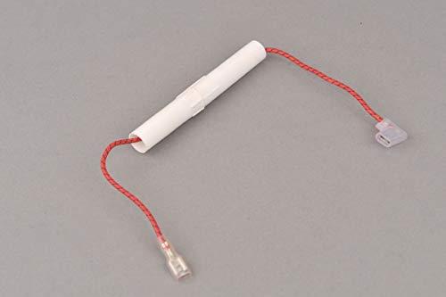 Hochspannungssicherung Sicherung für Mikrowelle 0,7A 5kV (Mikrowelle Sicherung)