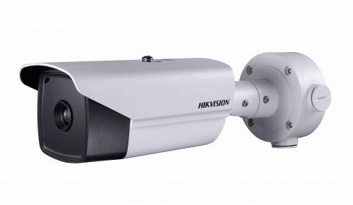 Hikvision Digital Technology ds-2td2136-15IP Security Camera Innen weiß und außen Gewehrkugel-Kamera Überwachungskamera (IP Security Camera, innen und außen, Kugel, weiß, Wand, IP66)