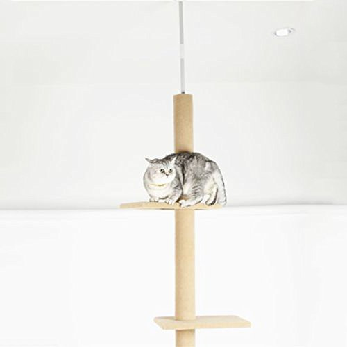 Zoom IMG-2 ygjt tiragraffi per gatti albero